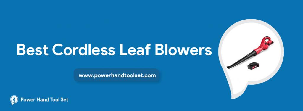 Best-Cordless-Leaf-Blowers